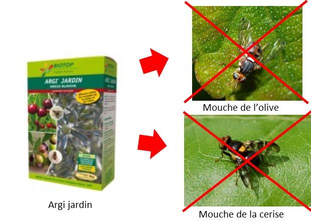 Argi jardin contre mouches