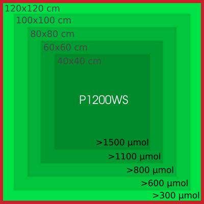 p1200ws_par_cover