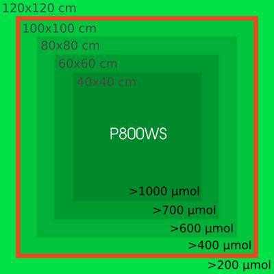 p800ws_par_cover
